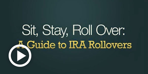 Sit, Stay, Rollover: A Guide to IRA Rollovers